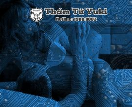 Điều tra tư nhân của Thám tử Yuki